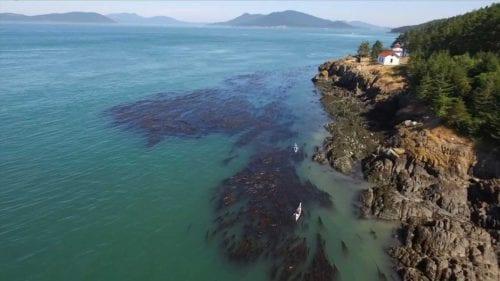 Fidalgo Island, Anacortes, WA